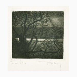 Landscape - Original Etching on Paper by Francesco Vitalini - 1904 1904