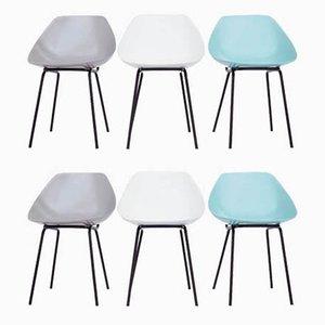 Shell Esszimmerstühle von Pierre Guariche, 6er Set