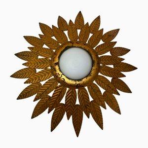Mid-Century Sunburst Iron Sconce