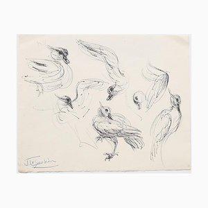 Oiseaux - Dessin Original - Mid-20th Century Mid-20th Century