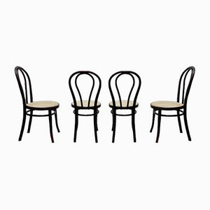 Antique Dining Chairs by Michael Thonet for Gebrüder Thonet Vienna GmbH, Set of 4