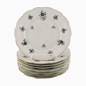 Rubens Plates in Porcelain with Floral Motifs from KPM, Berlin, 1940s, Set of 8