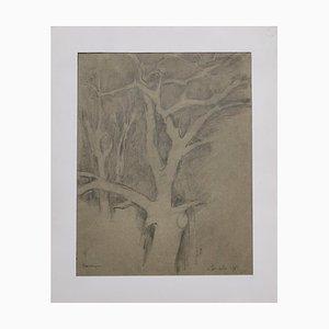 Baum des Lebens - Original Bleistiftzeichnung 1982 1982
