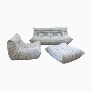 Vintage French Grey Leather Togo Living Room Set by Michel Ducaroy for Ligne Roset, Set of 3