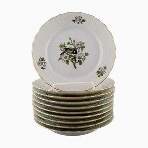 Royal Copenhagen Spring Plates in Porcelain with Motifs of Birds, 1980s, Set of 10