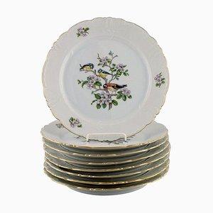Royal Copenhagen Spring Porcelain Dinner Plates with Motifs of Birds, 1980s, Set of 8