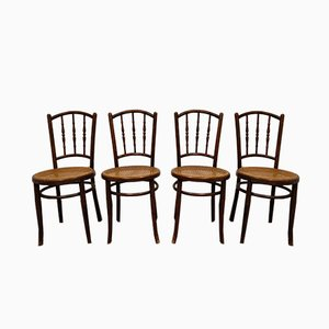 Bentwood Dining Chairs from Jacob & Josef Kohn, 1920s, Set of 4