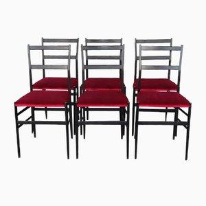 Superleggera Esszimmerstühle von Gio Ponti für Cassina, 1950er, 6er Set