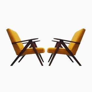 Mid-Century Model B-310 Var Easy Chairs in Luxury Golden Velvet, Set of 2