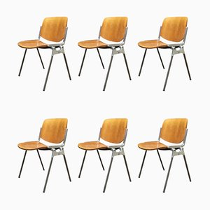 DSC Italian Stackable Dining Chairs by Giancarlo Piretti for Castelli / Anonima Castelli, 1960s, Set of 6