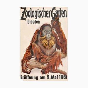 Dresdner Zoologischer Garten - Offsetdruck nach Etha Richter - 1960er 1960er