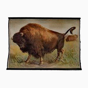 Vintage Poster of Buffalo