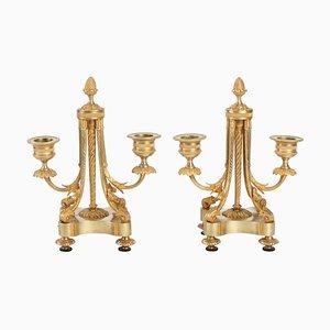 Antike Ameise 2 Kerzenhalter, 2er Set