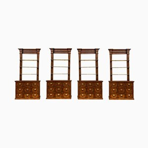 Antique Catalonian Apothecary Chemist Cabinets, Set of 2