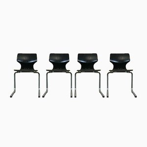 Pagwood and Chrome Steel Cantilever Chair, 1960s