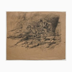 Lions - Original Pencil on Paper by Willy Lorenz - 1947 1947