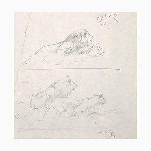 Lions - Original Bleistiftzeichnung von Willy Lorenz - 1958 1958