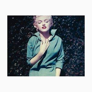 Monroe in Green Framed in Black by Baron