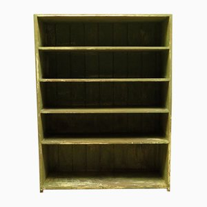 Green Boathouse Rustic Painted Shelves