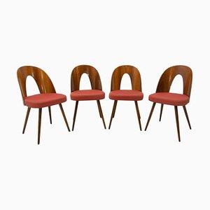 Mid-Century Czech Walnut Dining Chairs by Antonín Šuman for Tatra, 1960s, Set of 4