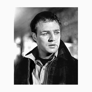 Marlon Brando On the Waterfront Archival Pigment Print Framed in Black by Everett Collection