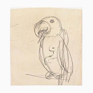 Parrot - Original Pencil on Paper by G. Galantara - Late 19th Century Late 19th Century