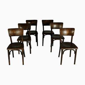 Pub Stühle von Thonet, 1930er, 6er Set