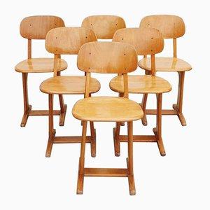 Sillas de escritorio modernistas de Carl Sasse para Casala, años 60. Juego de 6