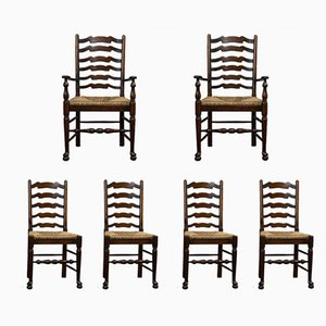 Antique Edwardian Ladder Back Carver Dining Chairs in Oak with Rush Seats, Set of 6