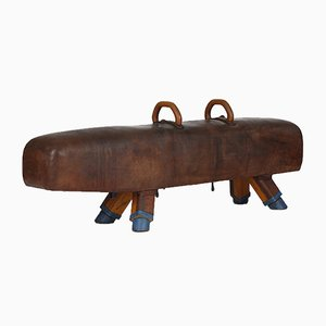 Vintage Leather Pommel Gymnastics Horse Bench, 1920s