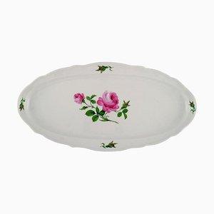 Piatto da pesce grande Meissen antico in porcellana dipinta a mano con rose rosa