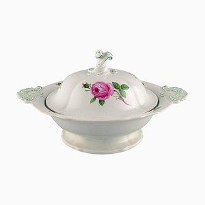 Sopera antigua grande Meissen de porcelana pintada a mano con rosas rosadas
