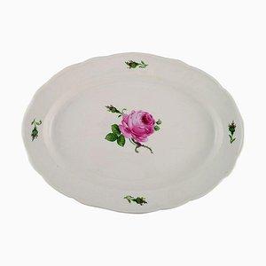 Piatto da portata Meissen antico in porcellana dipinta a mano con rose rosa