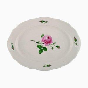 Piatto da portata grande Meissen antico in porcellana dipinta a mano con rose rosa