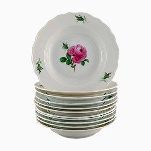 Antike Meissen Suppenteller aus handbemaltem Porzellan mit rosa Rosen, 11er Set