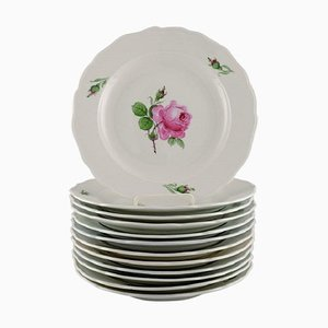 Antique Meissen Dinner Plates in Hand-Painted Porcelain with Pink Roses, Set of 12