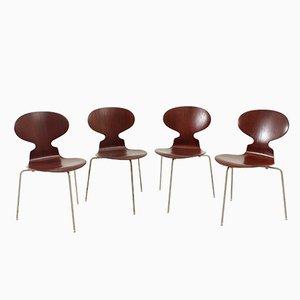 Frühe Ant Chairs von Arne Jacobsen für Fritz Hansen, 1950er, 4er Set