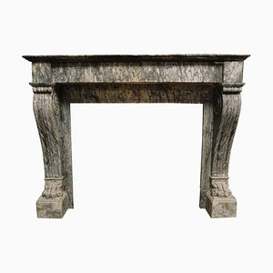 Antique Empire Fireplace Mantel in Gray Marble Carved with Lion's Paws, 1814