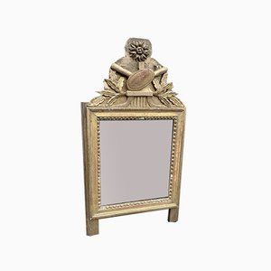Antique French Carved Wood & Gilt Mirror