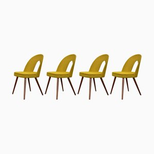 Walnut Dining Chairs by Antonín Šuman for Mier, 1960s, Set of 4