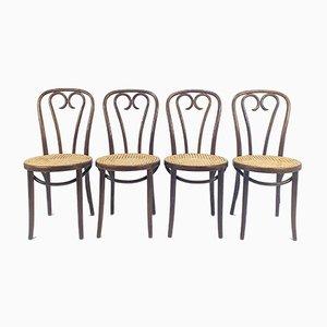 Mid-Century Esszimmerstühle aus Bugholz & Schilfrohr von Michael Thonet für ZPM Radomsko, 1960er, 4er Set