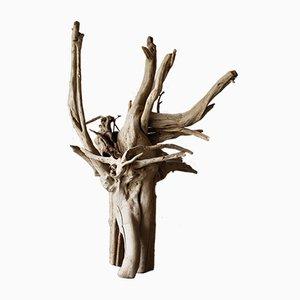 Escultura Mid-Century de madera flotante blanqueada