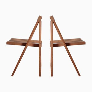 Mid-Century Folding Chairs by Aldo Jacober for Alberto Bazzani, Set of 2