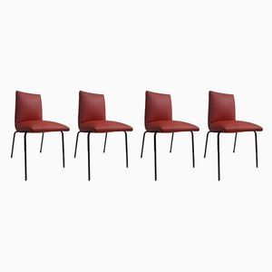 Dining Chairs by Pierre Guariche for Meurop, 1950s, Set of 4
