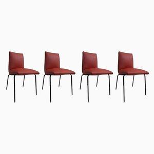 Esszimmerstühle von Pierre Guariche für Meurop, 1950er, 4er Set
