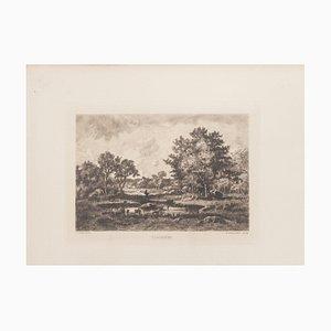 Clairière Etching by N. V. Diaz de la Pena, 1875