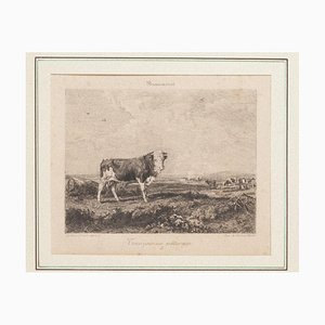 Taurus at Pasture Original Etching by Gustave Greux & A. Salmon, 1880
