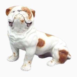 Britische Mid-Century Steingut Bulldogge, 1960er