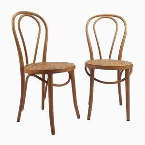 Mid-Century Bugholz & Schilfrohr Schreibtischstühle von ZPM Radomsko, 2er Set