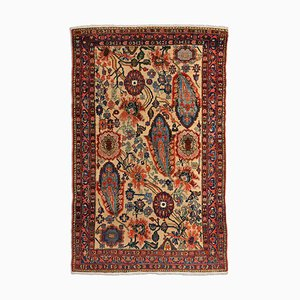Middle East Floral Beige Rug with Border, 1930s